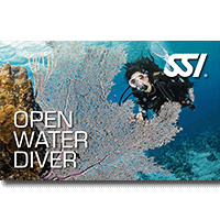 Open Water Diver.png