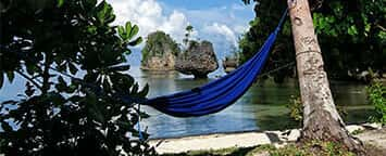 Hammocking---356x144.jpg